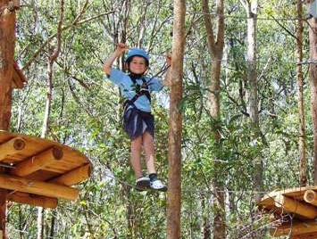 TreeTops Newcastle - VIC Tourism