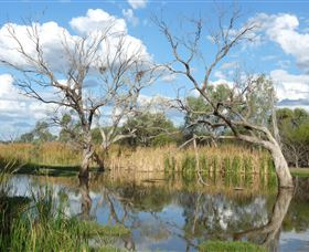 Lagoon Creek - VIC Tourism