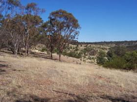 Onkaparinga River National Park - VIC Tourism