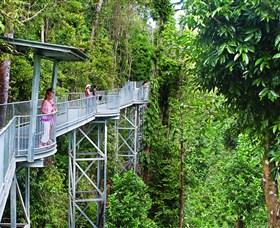 Mamu Tropical Skywalk - VIC Tourism