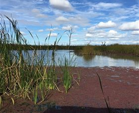 Gwydir Wetlands - VIC Tourism