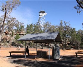 Pilliga Forest Lookout Tower - VIC Tourism