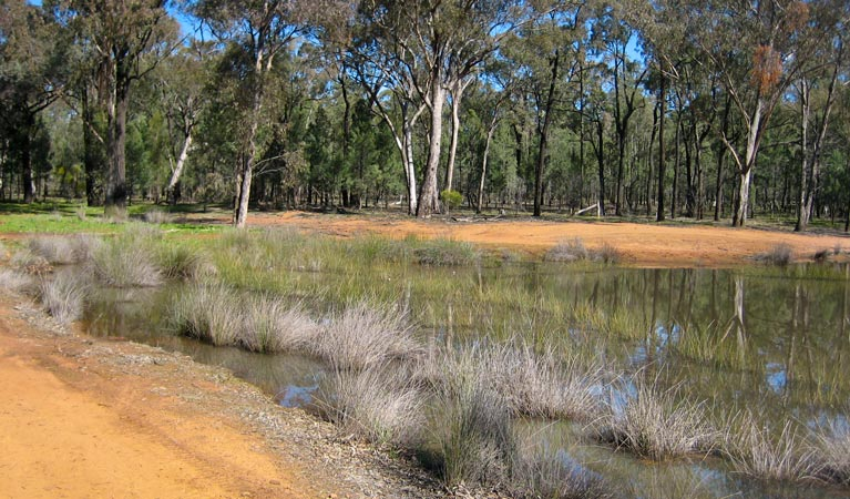 Beni State Conservation Area - VIC Tourism