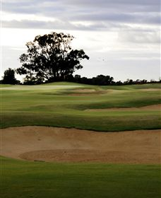 Black Bull Golf Club - VIC Tourism