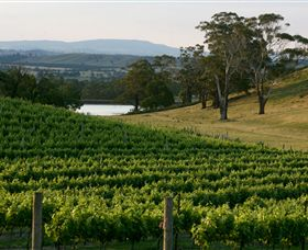 Granite Hills Winery - VIC Tourism