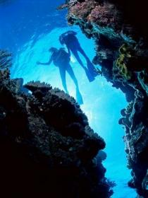 Caves and Canyons Dive Site - VIC Tourism