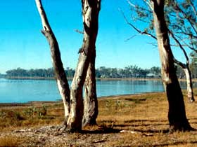 Lake Broadwater Conservation Park - VIC Tourism