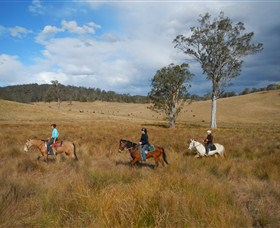 Chapman Valley Horse Riding - VIC Tourism