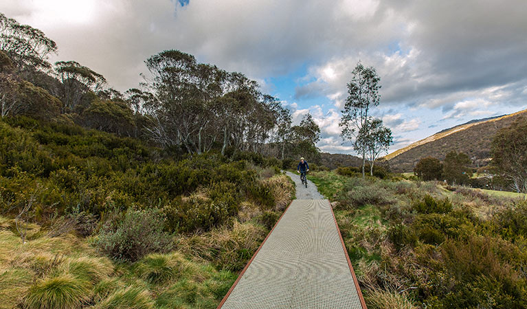 Thredbo Valley track - VIC Tourism