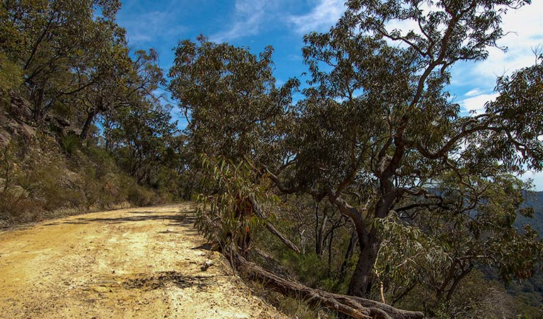 Parr State Conservation Area - VIC Tourism