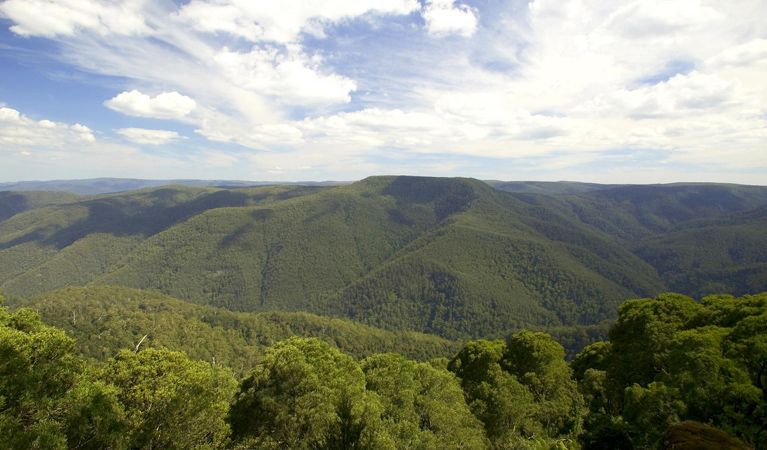 Barrington Tops National Park - VIC Tourism