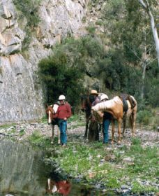 Yarramba Horse Riding - VIC Tourism