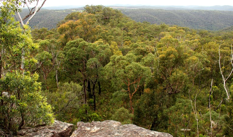 Mount Olive lookout - VIC Tourism