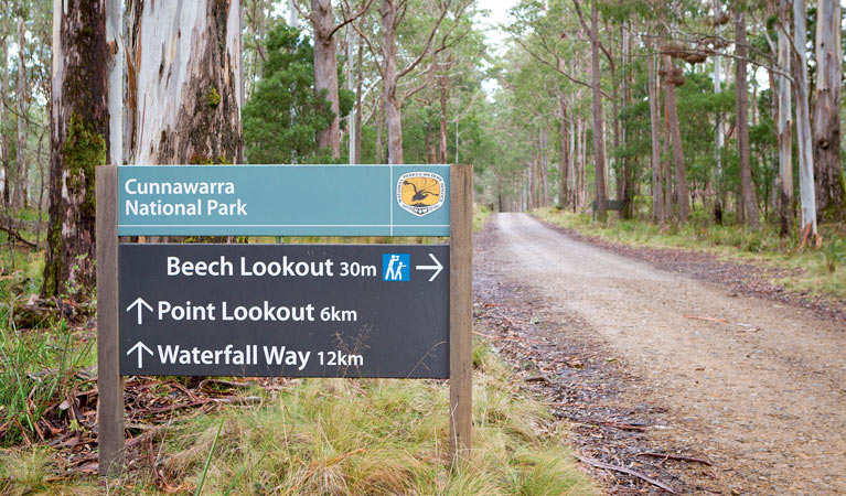 Beech lookout - VIC Tourism