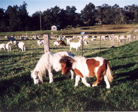 Trudgalong Farm - VIC Tourism