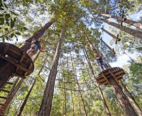 TreeTop Adventure Park Central Coast