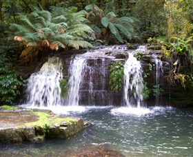 Barrington Tops National Park Walks - VIC Tourism