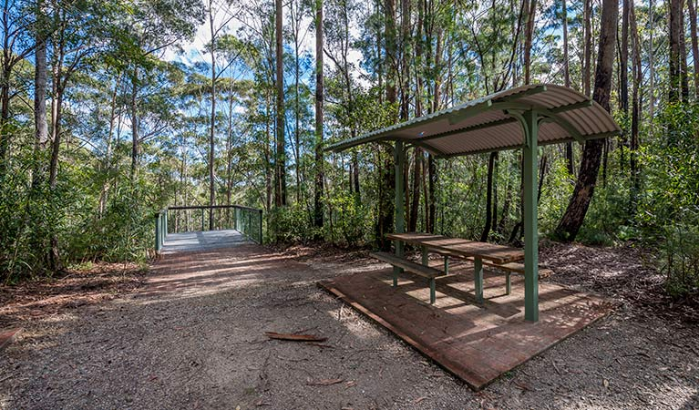 Big Nellie lookout and picnic area - VIC Tourism