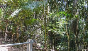Goorgana walking track - VIC Tourism