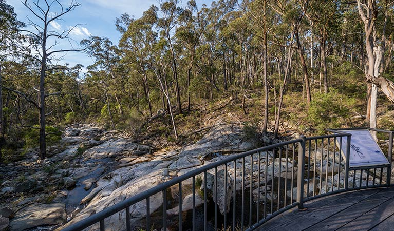 Myanba Gorge walking track - VIC Tourism