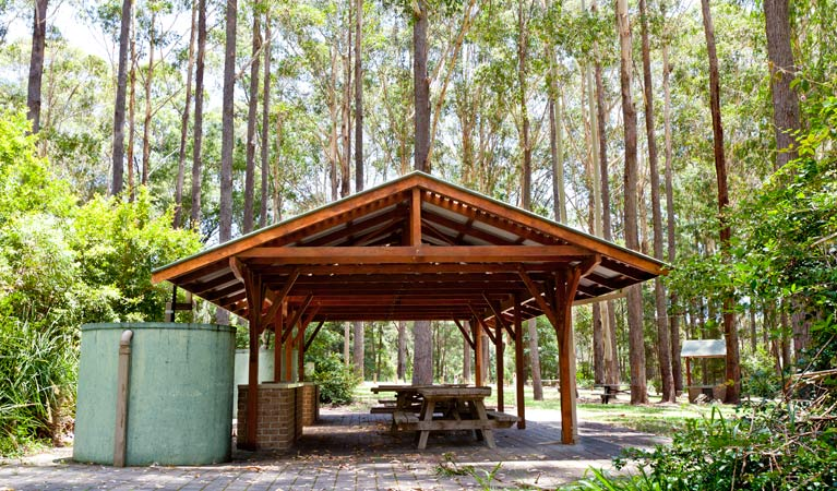 Bongil picnic area - VIC Tourism
