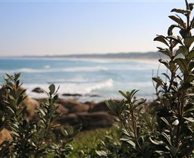Cape Conran Coastal Park - VIC Tourism