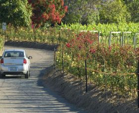 Cassegrain Wines - VIC Tourism