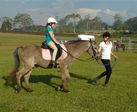 Port Macquarie Horse Riding Centre - VIC Tourism