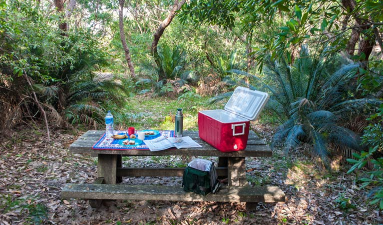 Broadwater Beach picnic area - VIC Tourism
