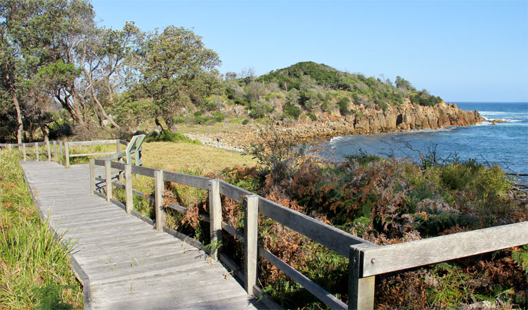 Mimosa Rocks walking track - VIC Tourism