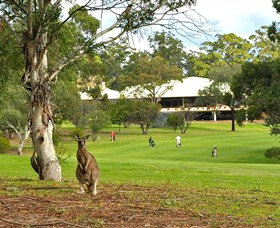 Pambula Merimbula Golf Club - VIC Tourism