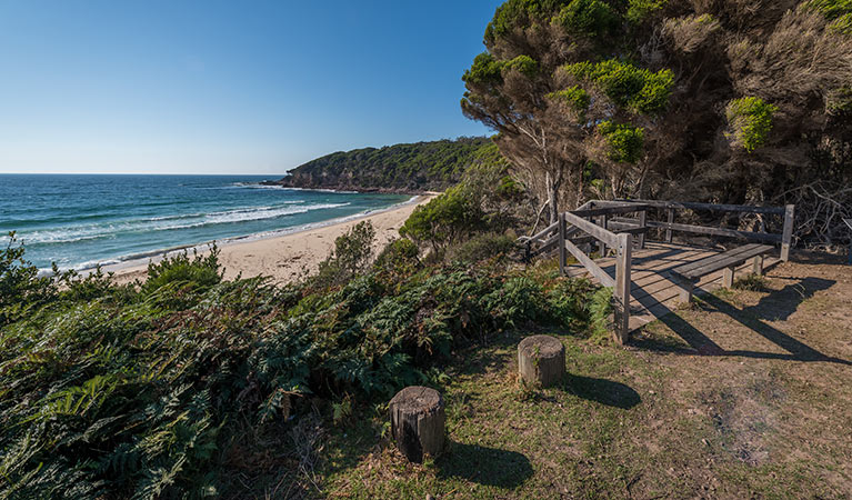 Terrace Beach and Lennards Island - VIC Tourism