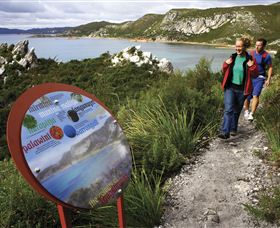 Rocky Cape National Park - VIC Tourism