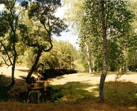 Oldina Picnic Area - VIC Tourism