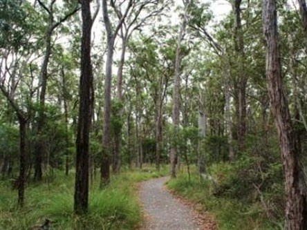 Caboolture Regional Environment Education Centre - Walking Trails - VIC Tourism