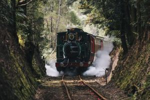West Coast Wilderness Railway River and Rainforest from Strahan - VIC Tourism