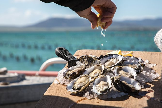 Pure Coffin Bay Oysters - Oyster Farm and Bay Tour
