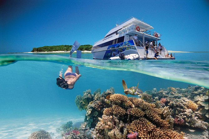 3-Day Southern Great Barrier Reef Tour Including Lady Musgrave Island - VIC Tourism