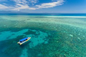 Ocean Safari Great Barrier Reef Experience in Cape Tribulation - VIC Tourism