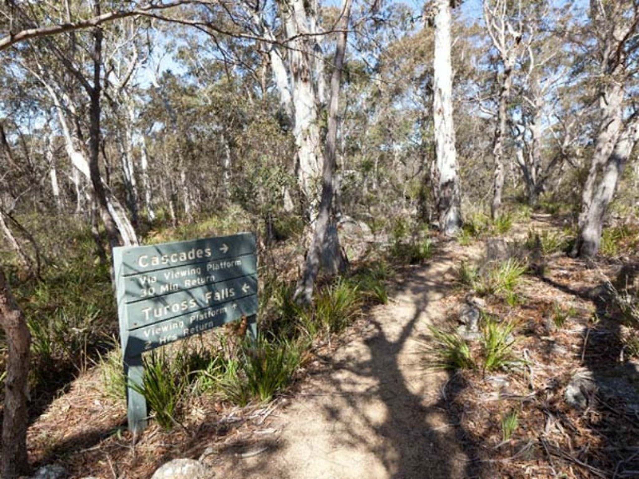 Cascades walking track and viewing platform - VIC Tourism