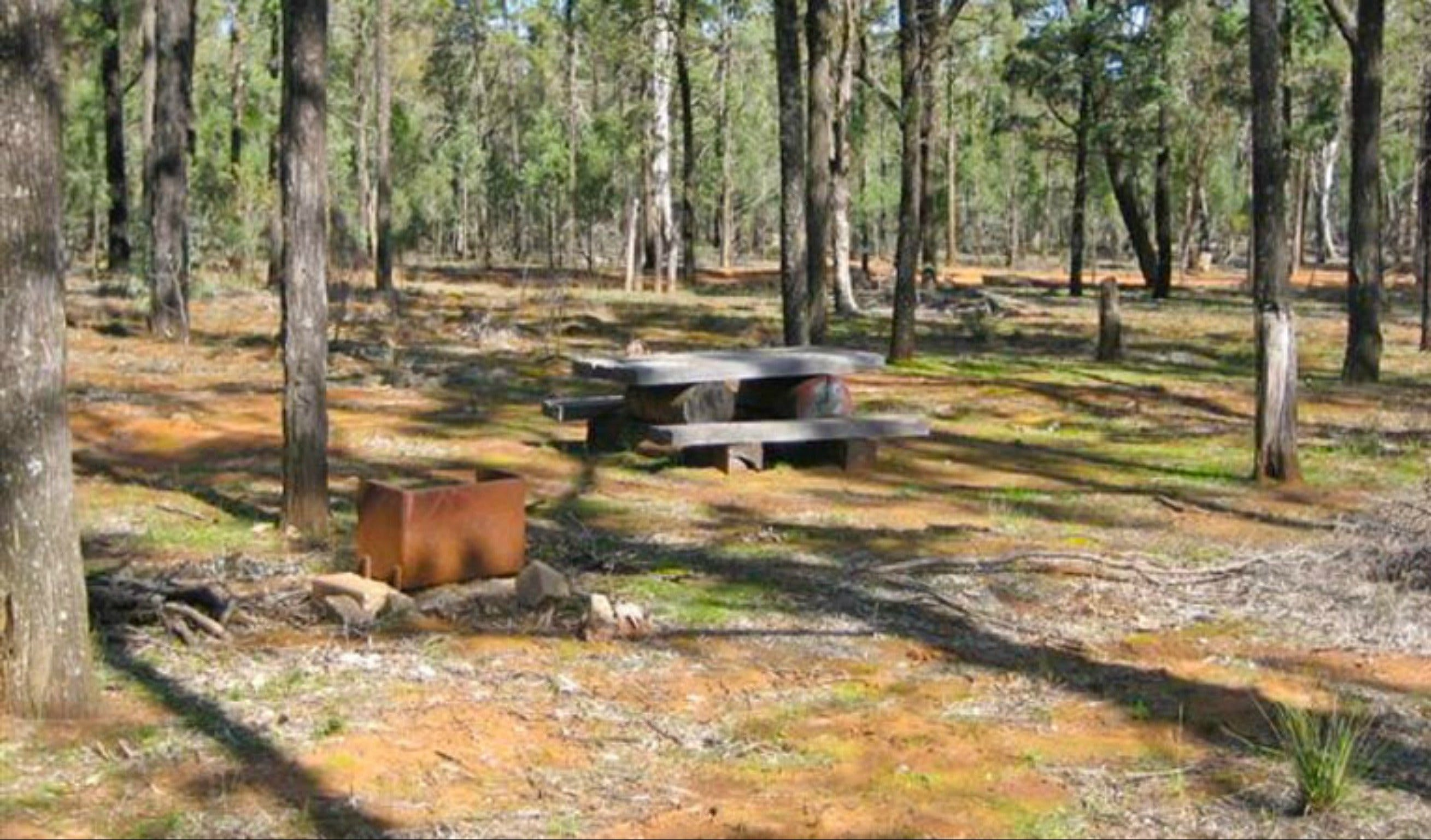 Two Dams picnic area - VIC Tourism