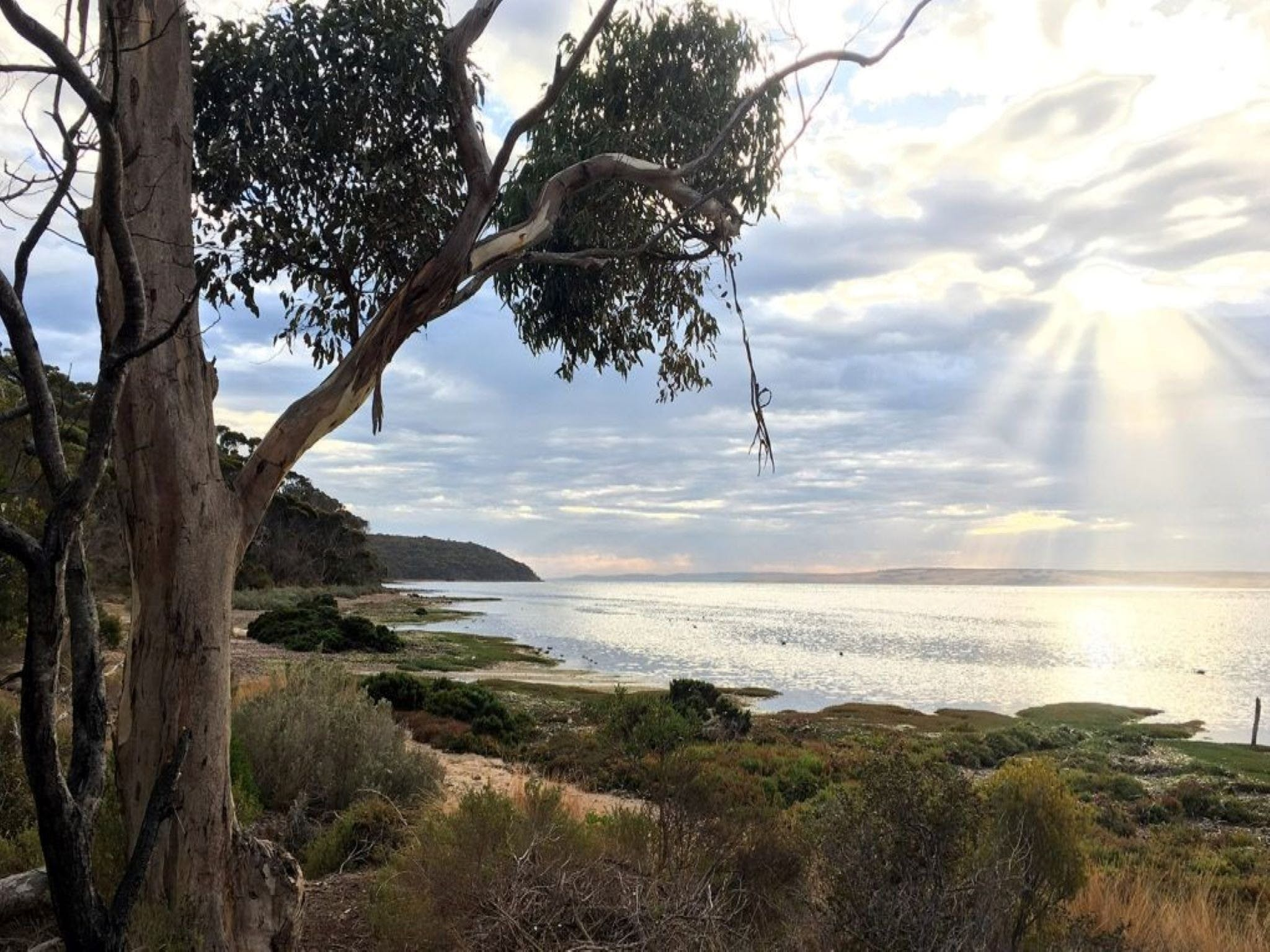 Fish Cannery Walking Trail - VIC Tourism