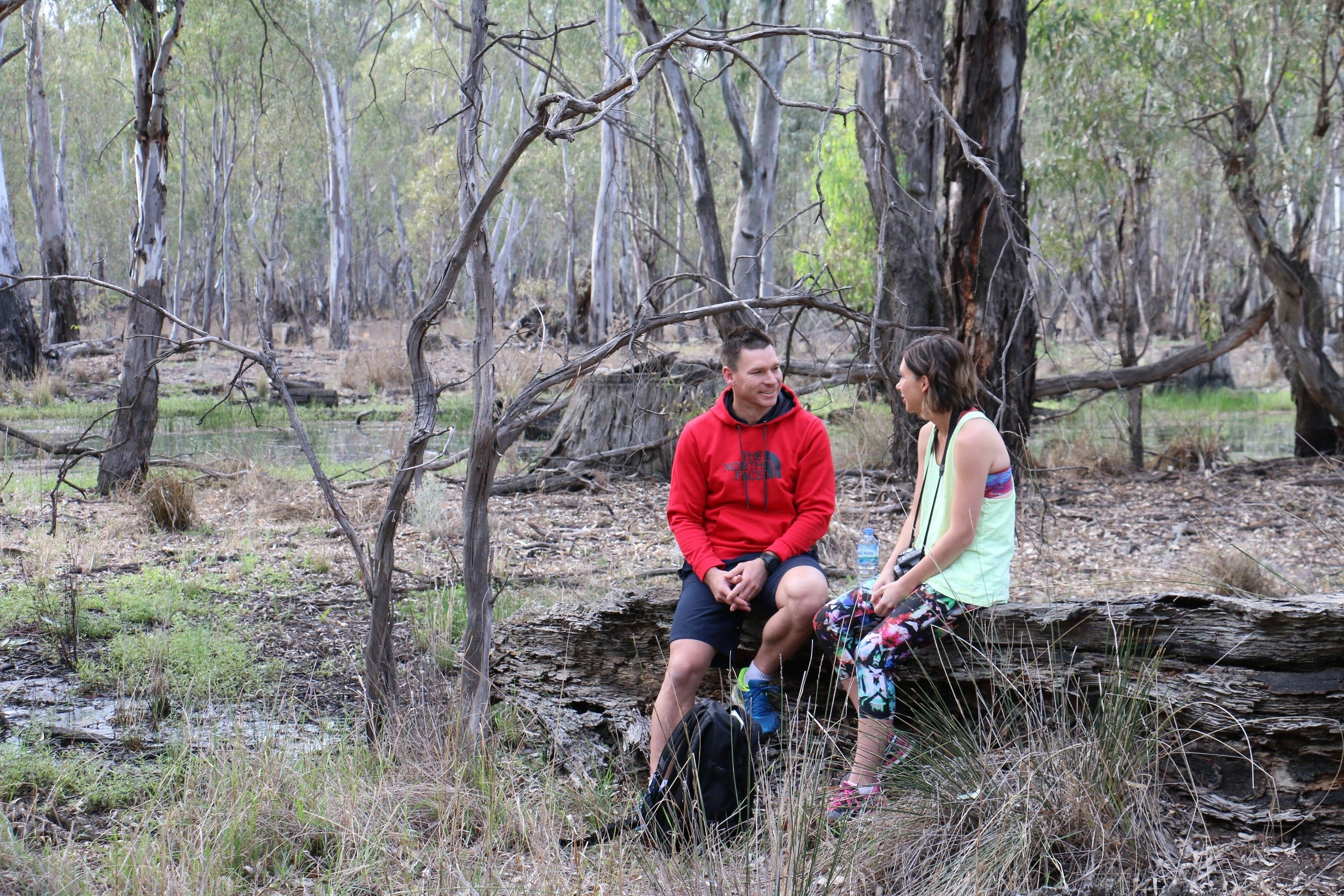 Gunbower Island Forest Drive - VIC Tourism