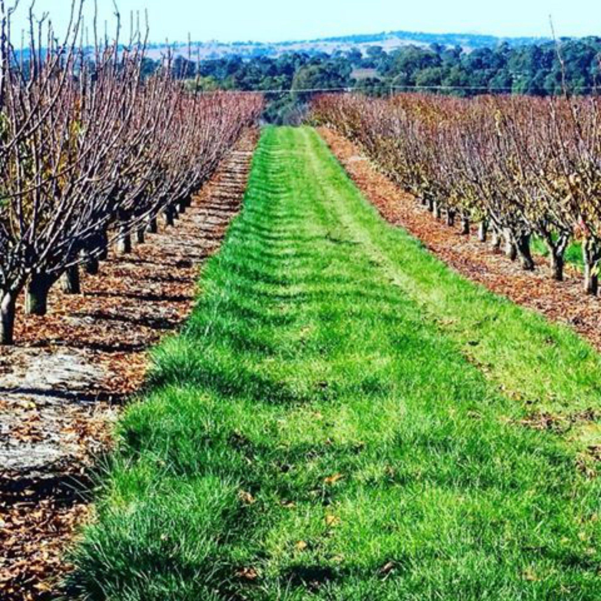 Hall Family Orchards - VIC Tourism