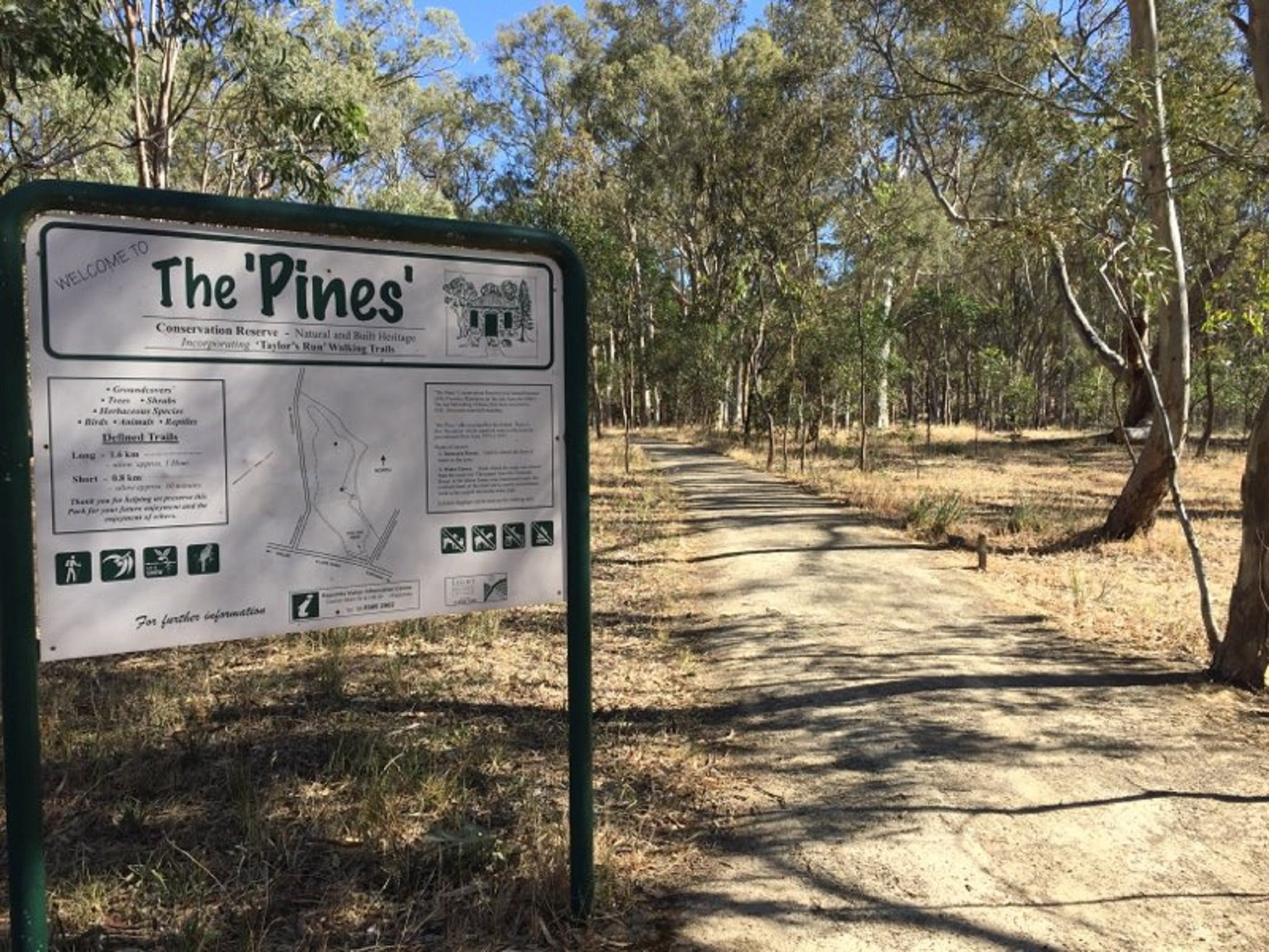 The Pines Conservation Reserve - VIC Tourism