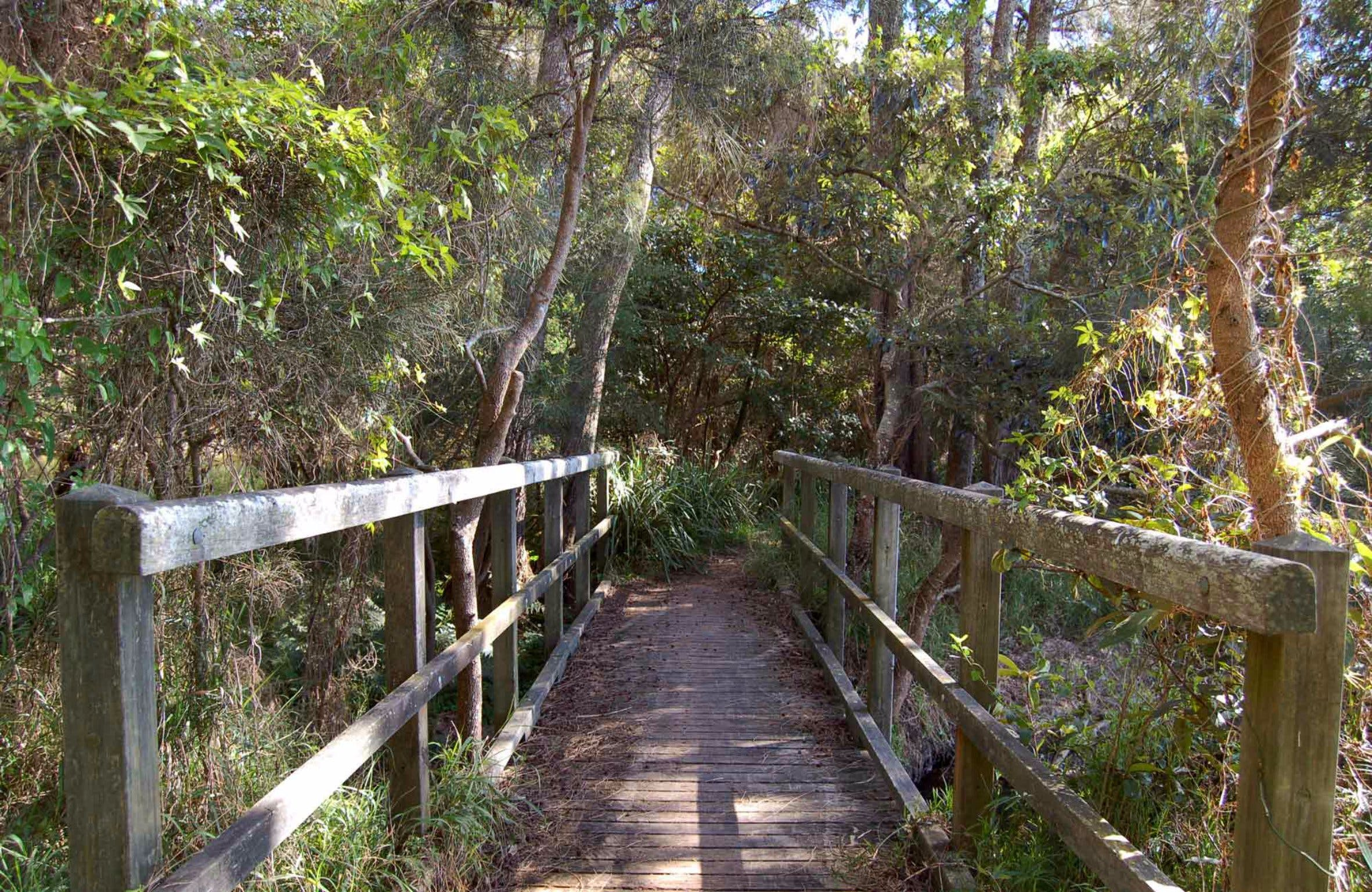 Awaba Bay Foreshore Walk - VIC Tourism