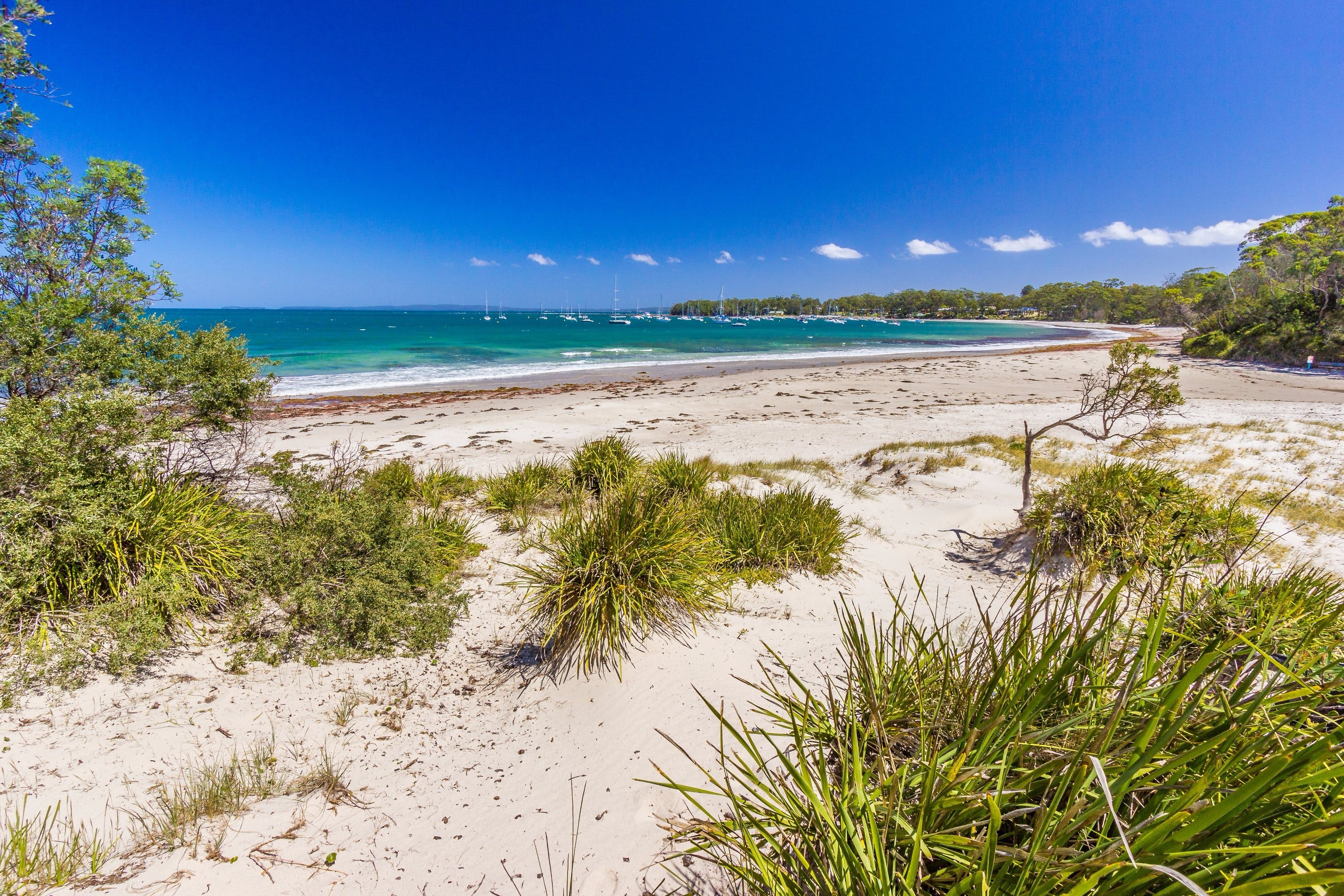 Callala Bay - VIC Tourism