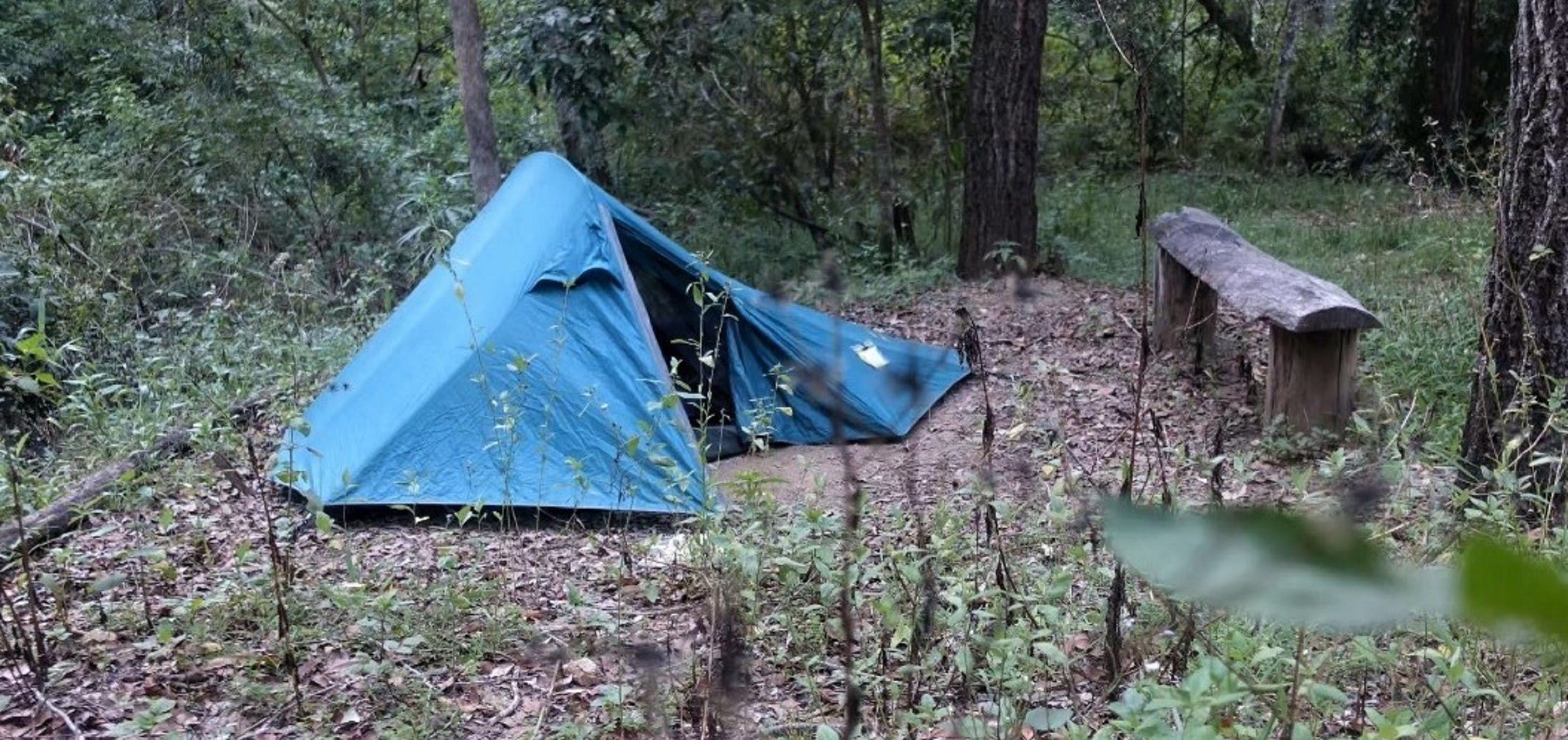 England Creek Bush Camp - VIC Tourism