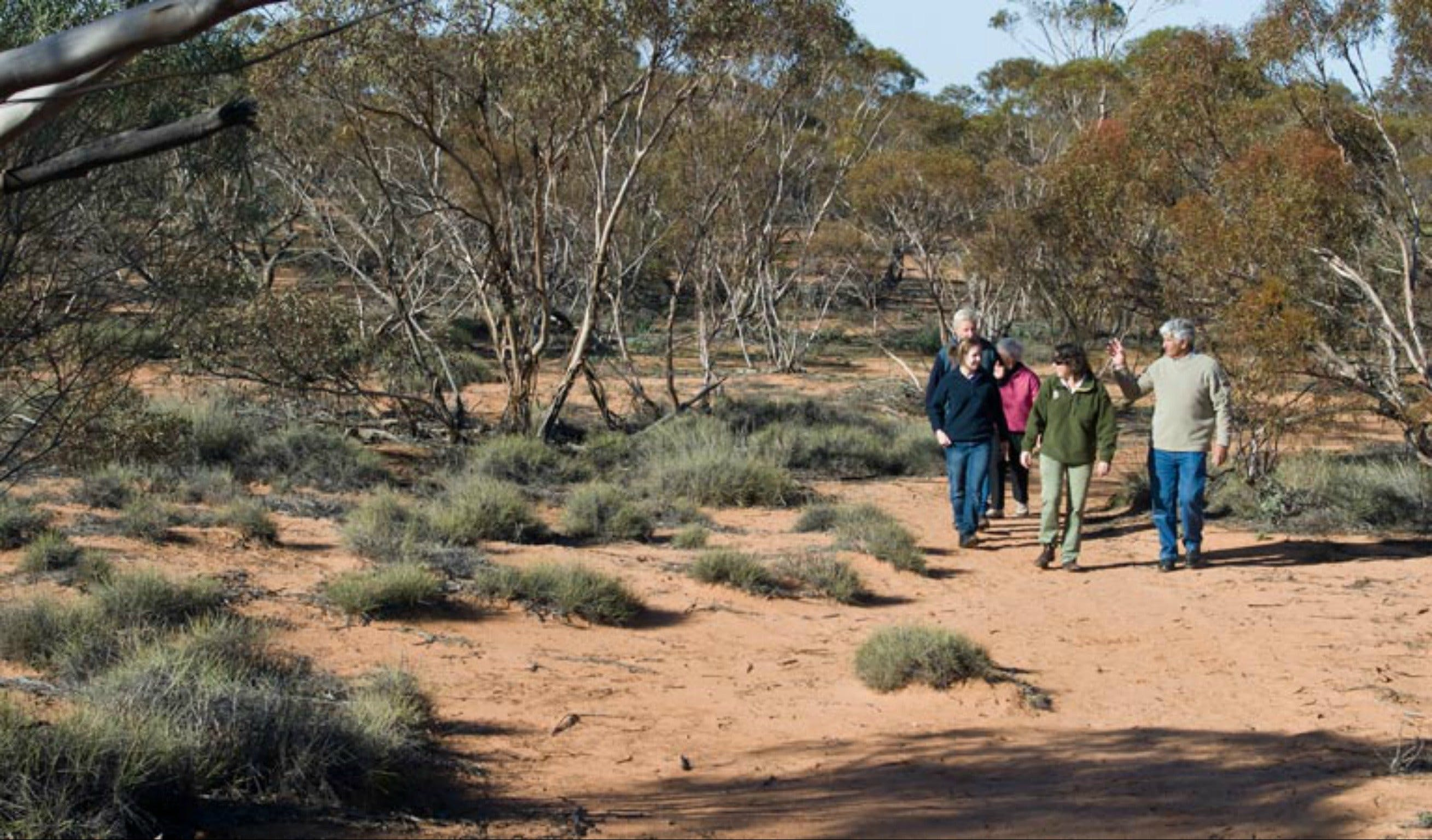 Mallee Stop walking track - VIC Tourism