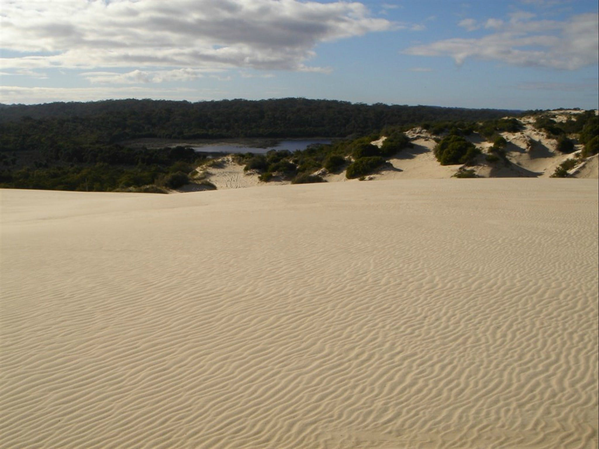 Yeagerup Sand Dunes - VIC Tourism